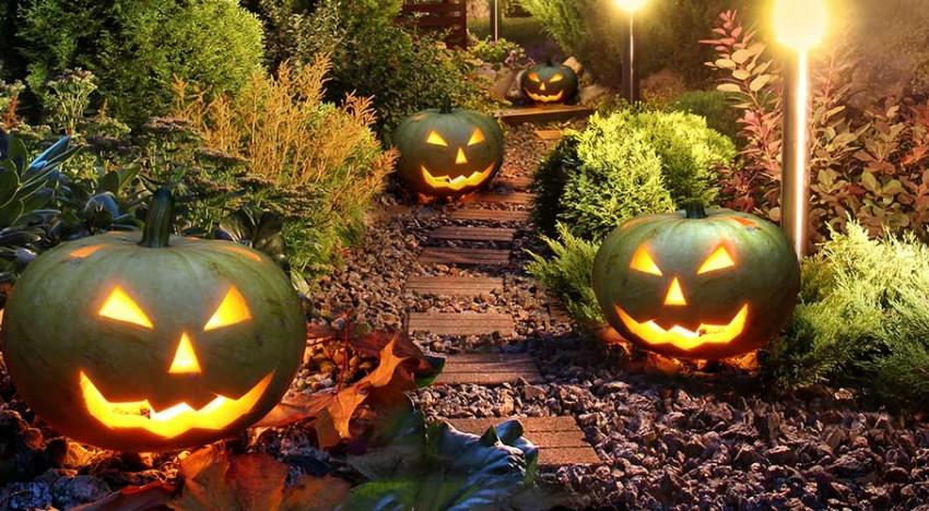 L'Halloween – paysage éphémère ou Land art ?