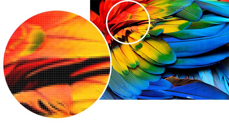 detail-image-matricielle