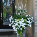 potée fleurie en façade