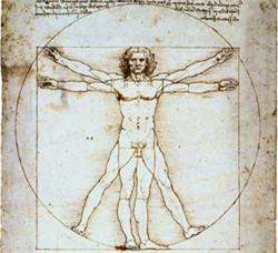 L'homme vitruvien Source Wikipédia